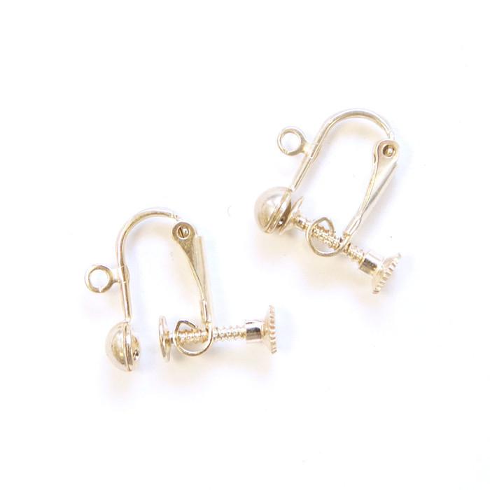 2pc Sterling Silver Screw Earrings
