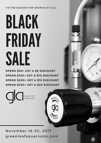 Happy Thanksgiving! - Black Friday has arrived early to GLA