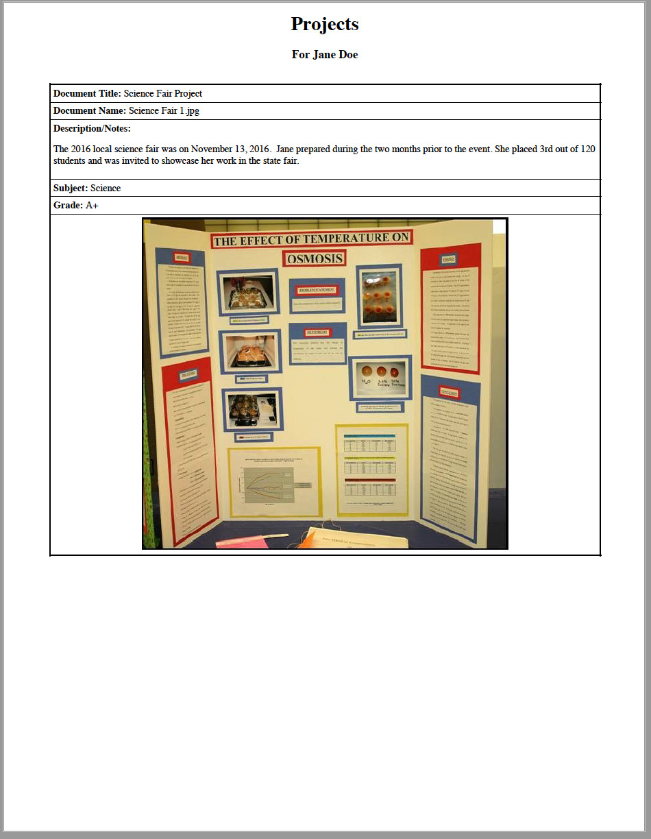 Science fair in portfolio report
