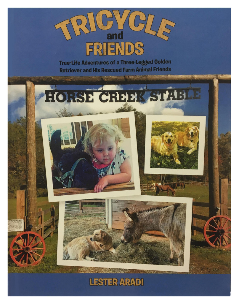 Tricycle and Friends Paperback