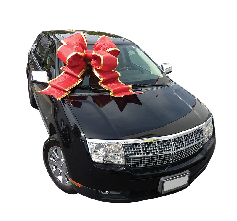 24 Inch Giant Car Bow