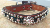 Gator Dog Collar 10-21""
