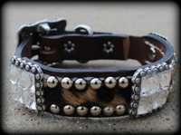 Wild Hide & Bling Dog Collar 10-21""