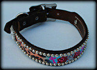 Large Dog Collar 17-22""