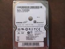 Samsung ST320LM001 HN-M320MBB REV.A Site:DGT 320gb Sata S2R6J9KD405203 (T)