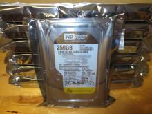 """Western Digital WD2503ABYX-01WERA0 RE4 64MB 7200rpm 250gb 3.5"""" Sata hard drive"""