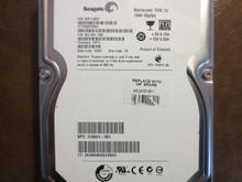 Seagate ST31000528AS 9SL154-020 FW:HP11 TK 1000gb Sata