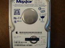 Maxtor 6L250M0 CODE:BACE1GE0 (N,M,C,A) Apple# 655-1194E