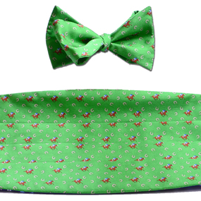 Horses & Horseshoes Cummerbund & Bow Tie Set - Green