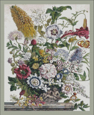 Twelve Months of Flowers - 008 August