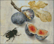 Figs with a Beetle