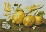 Three Lemons with a Bee