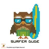 Hootie Surfer Dude