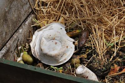 food-into-compost.jpg