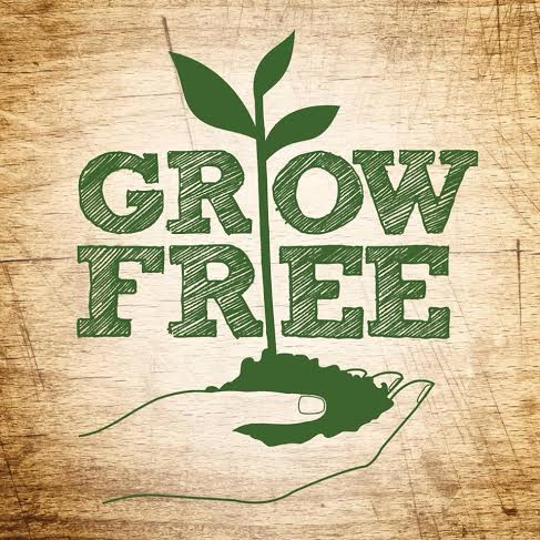 grow-free-logo.jpg