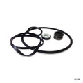 MATRIX | HAYWARD SUPER 2 PUMP SEAL KIT | PROFFESIONAL GOKIT, GO-KIT | MTX8002
