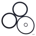 "MATRIX | SWIMQUIP DUETTA | STARITE BACKWASH 2"" PISTON ORING KIT 
