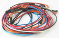 HAYWARD | WIRE HARNESS ASSEMBLY IID | HMX WHA 2934