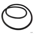 "Pentair/Sta-Rite | Oring,CORD FOR 21""TANK (O-485) 