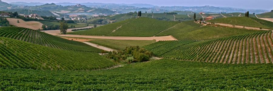 Cunico Monferrato
