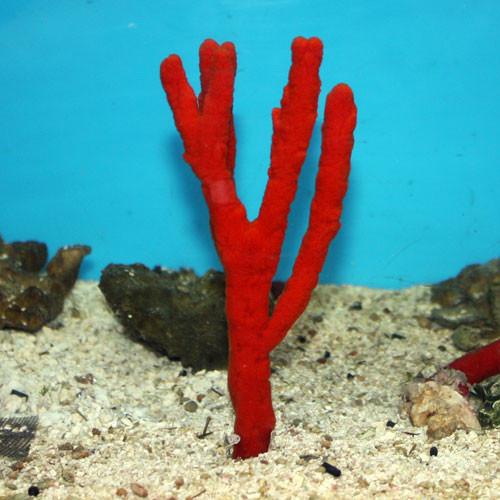 Red Tree Sponge Large