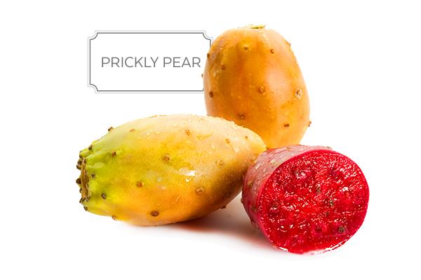 prickly-pear-a.jpg