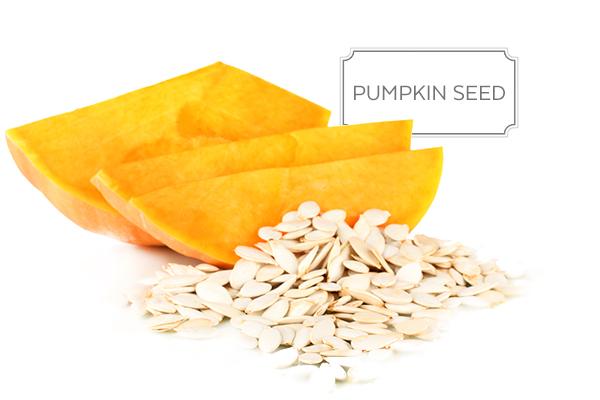pumpkin-seed-a.jpg