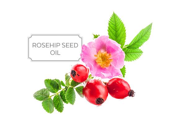 rosehip-a.jpg