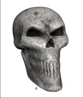 Bone Skull Angle 2