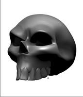 Carbon Fiber Angle Skull 3