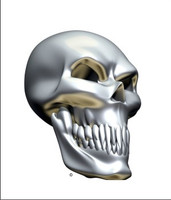 Chrome Skull Angle 2
