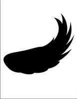 Wings 01