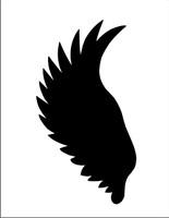 Wings 13
