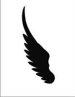 Wings 19