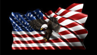 American Flag Flying Eagle
