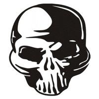 New Skull #8