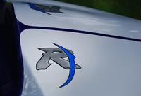 Domed R1 Symbol