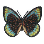 Iron On Patch Applique - Butterfly Black Blue Yellow