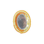 Iron On Patch Applique - Mirror Oval Orange