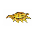 Iron On Patch Applique - Metallic Gold Sea Shell.,