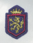 Iron On Patch Applique - Crest Golden Lion