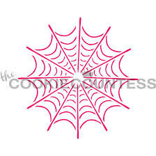 Single Spider Web