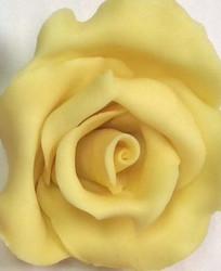 Yellow Magic Chocolate .5LB