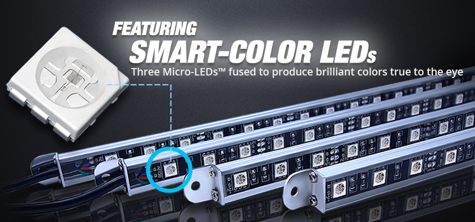 underbody led lighting