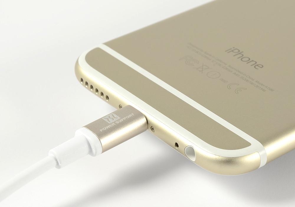 Gold Lightening connector