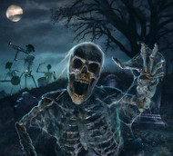 Bone Chillers Halloween Visual Effects DVD