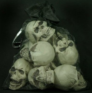 Bag of 6 Small Skulls