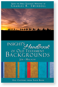 Insight's Handbook of Old Testament Backgrounds: Job - Malachi.  Paperback Book