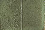 485-flipflop-gold-green-150jpg.jpg