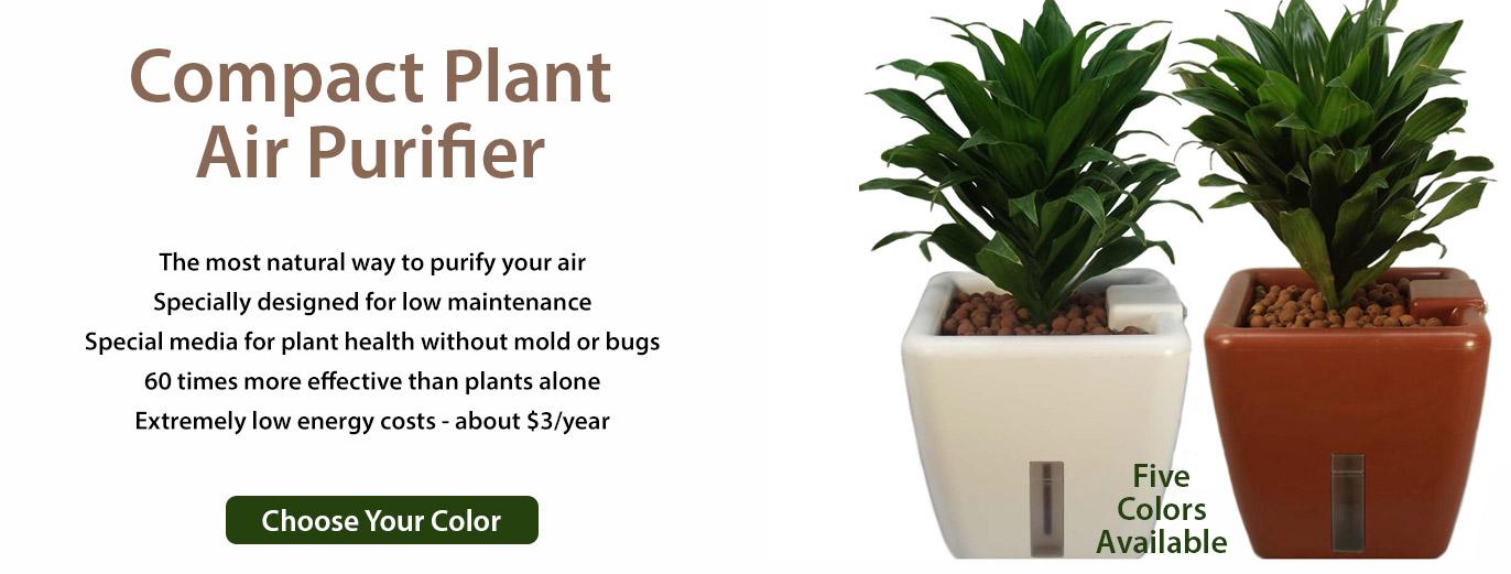 Plant Purifier